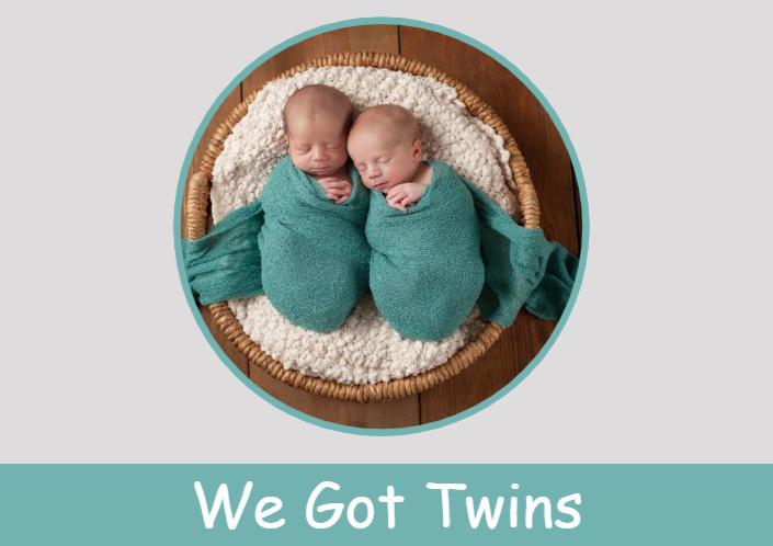 אלבום סטנדרטי רוחבי-We Got Twins